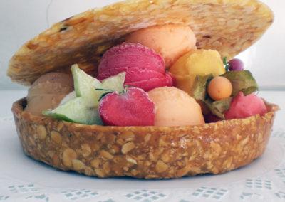 Assortiments sorbets aux produits naturels et fruits